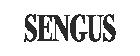 Logo Sengus